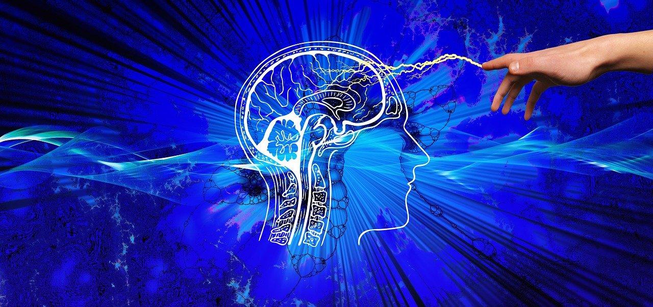 come potenziare il tuo cervello