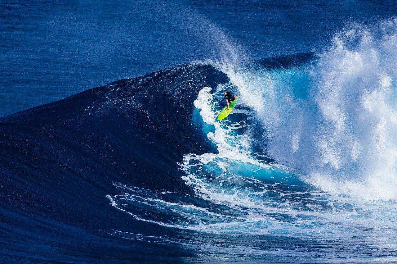 surfing storia